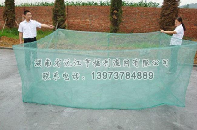 黄鳝泥鳅网箱