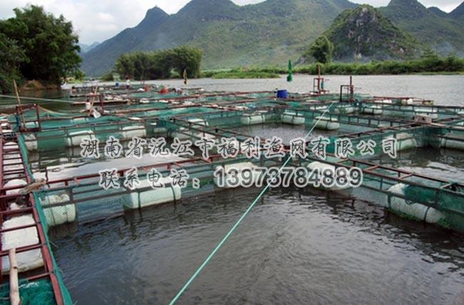 网箱养鱼平台